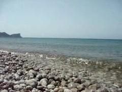 Beach Thumb