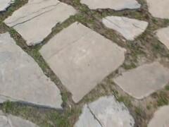 Misato Kuninaka gets tasty dick to choke her well Thumb