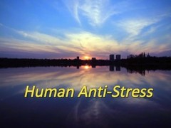 Human Anti-Stress (trailer from extreme belly punching video) Thumb