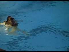 Ludivine Sagnier Nude Boobs And Blowob In Swimming Pool Movie ScandalPlanetCom Thumb